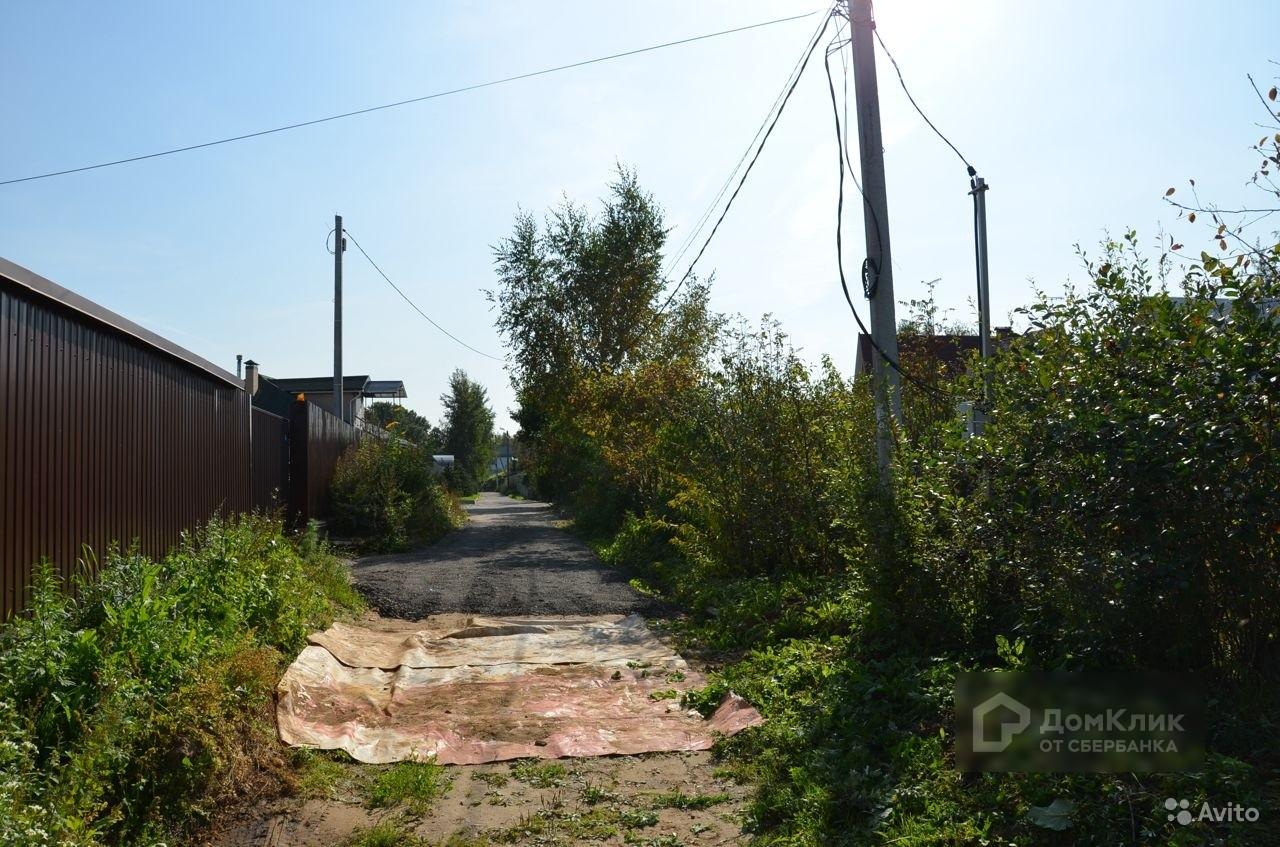 деревня горышкино фото около входа